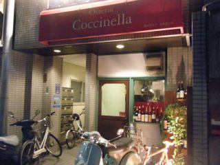 coccinella1.jpg